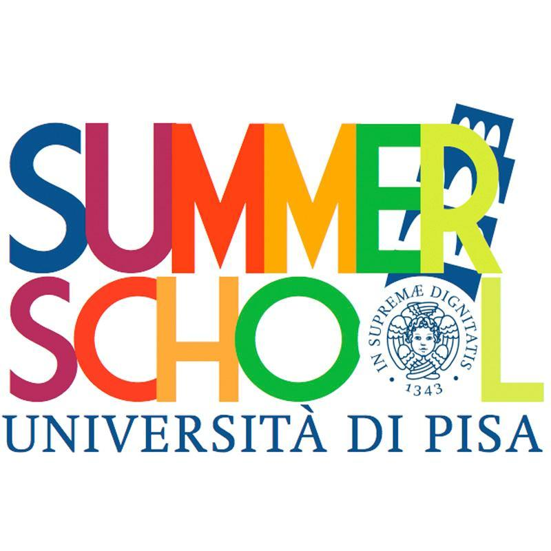 Logo Summer School UNIPI